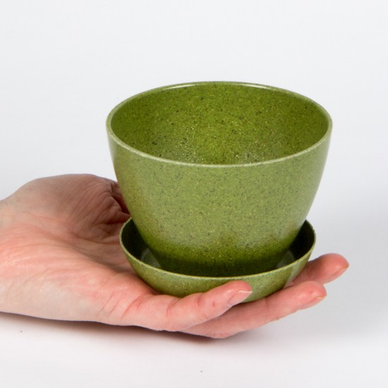Pot et soucoupe biodégradable 4 pouces