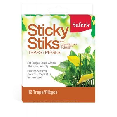 Sticky sticks - plant traps (fungus gnats)