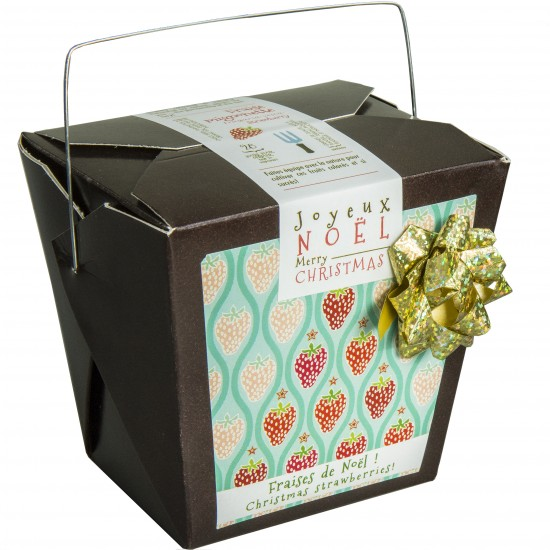 Fraises de Noël (chocolat)