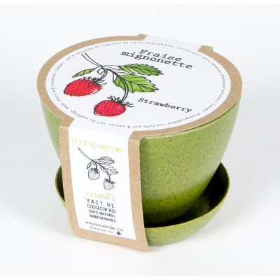 Minipot fraise