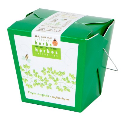 English thyme (kraft box)